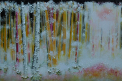 Early Forestmorning 100x50-  Sold
